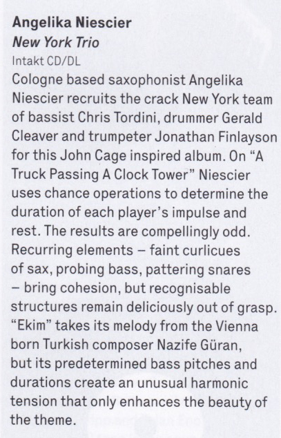 the wire reviews angelika niescier new york trio